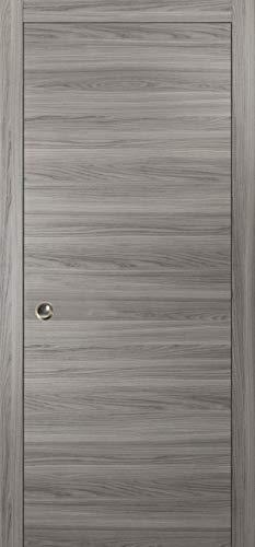 Modern Pocket Door 28 x 80  Planum 0010 Ginger Ash  Frames Trims Pulls Rail Hardware  Solid Wood Interior Sliding Closet Grey Door