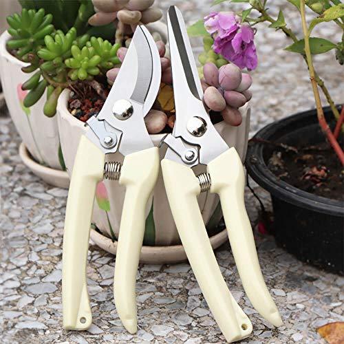 BUGUI Garden Pruning Shears Set - 2 Pack 1 Bypass Pruner1 Straight Blade Scissors Ultra Lightweight Gardening Clippers for Cutting Flowers Trimming Plants Bonsai Fruits Picking